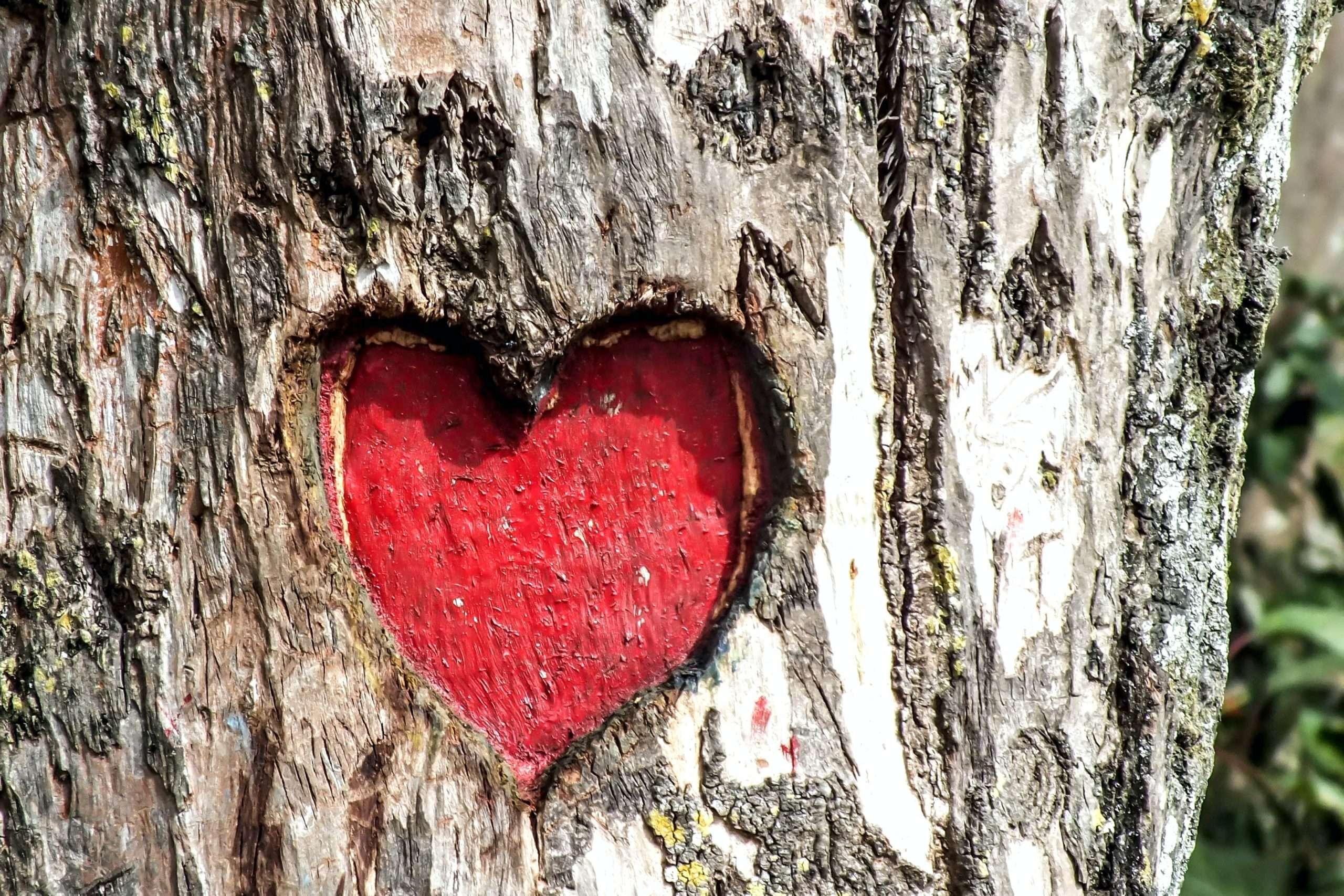 Love characteristics
